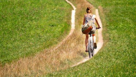 Bici tempo libero