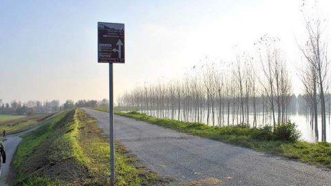 Riva del Po pista ciclabile Ferrara