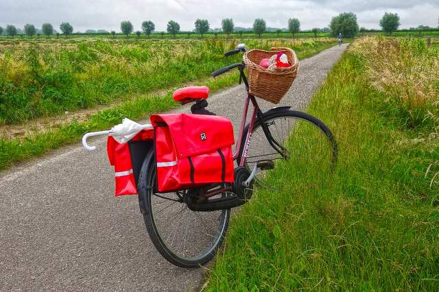 Borse bici